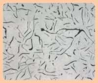 Aşılanmış gri dökme demirin mikroyapısı