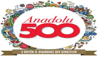 Anadolu'nun En Büyük 500 Şirketi Arasında Kimler Yer Aldı?Anadolu Kaplanları'nın 2017 deki ciro ve karlılık oranları
